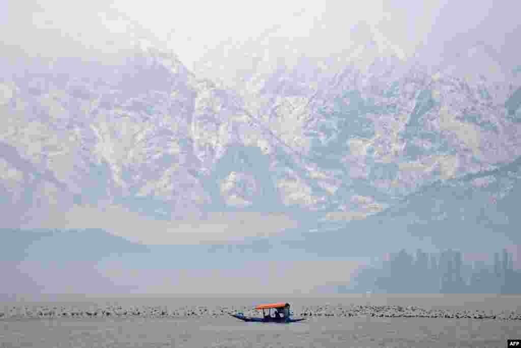 បុរសម្នាក់ ចែវទូកអំឡុងពេលមេឃភ្លៀងនៅលើបឹង Dal Lake ក្រុង Srinagar ប្រទេសឥណ្ឌា។
