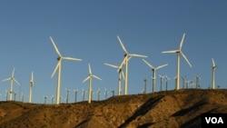 Las turbinas de los molinos de viento para generar energía eléctrica son fabricadas incluyendo tierras raras.
