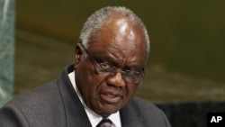 FILE - Namibia's Hifikepunye Pohamba addresses the U.N. General Assembly in New York, Sept. 25, 2012.