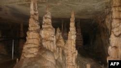 Shpella e Mamuthit në Kentaki