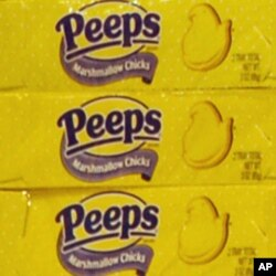 According to the company that makes them, the number of Peeps sold in the weeks before Easter could more than circle the equator.