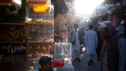 Suasana di sebuah pasar di Kabul, Afghanistan, 12 Oktober 2021. (AP Photo/Ahmad Halabisaz)