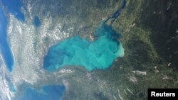 Late summer plankton blooms across much of Lake Ontario, one of North America's Great Lakes, in this photograph taken by an astronaut on the International Space Station courtesy of NASA.