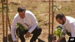 """El canciller mexicano Marcelo Ebrard, a la izquierda, y el presidente de El Salvador, Nayib Bukele, plantan un árbol durante el lanzamiento del programa """"Sembrando Vida"""" en San Luis Talpa, El Salvador, el viernes 19 de julio de 2019."""