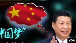 """习近平维系""""中国梦"""""""