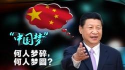 维系远大中国梦 习近平狠抓共青团
