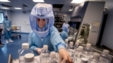 FILE - In this March 27, 2021 file photo a laboratory worker simulates the workflow in a cleanroom of the BioNTech Corona vaccine production in Marburg, Germany, during a media day.