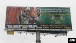 """Biển quảng cáo lớn bằng tiếng Việt và tiếng Anh trên đường từ Sân bay Quốc tế Nội Bài về Hà Nội, với cảnh báo: """"Buôn lậu động thực vật hoang dã sẽ bị xử lý theo pháp luật"""""""