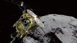Quiz - Japan Deploys Jumping Robots on Distant Asteroid