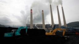 Ekskavator menumpuk batu bara di tempat penyimpanan di PLTU Suralaya, Banten, 20 Januari 2010. (Foto: REUTERS/Dadang Tri)