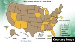 En los estados coloreados en el mapa de marrón es donde más se ha propagado la enfermedad esta temporada (Fuente: CDC).