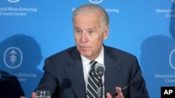 Makamu Rais wa Marekani, Joe Biden
