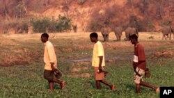 Residents of Kariba cross a stream in full view of elephants waiting to drink water in this November 2005 file photo. (AP Photo/Tsvangirayi Mukwazhi)