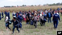 Yevropa: qochqinlar oqimi davom etmoqda