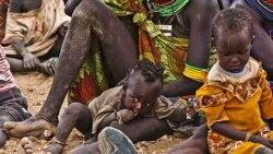 تلاش سنا آمریکا برای تسریع کمک به قحطی زدگان شاخ آفریقا