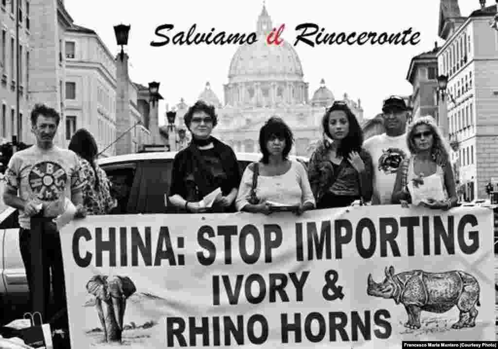 China: Pára de importar marfim e cornos de rinoceronte. Manifestação no Vaticano contra a caça furtiva em Moçambique. Foto de Francesco Maria Mantero.
