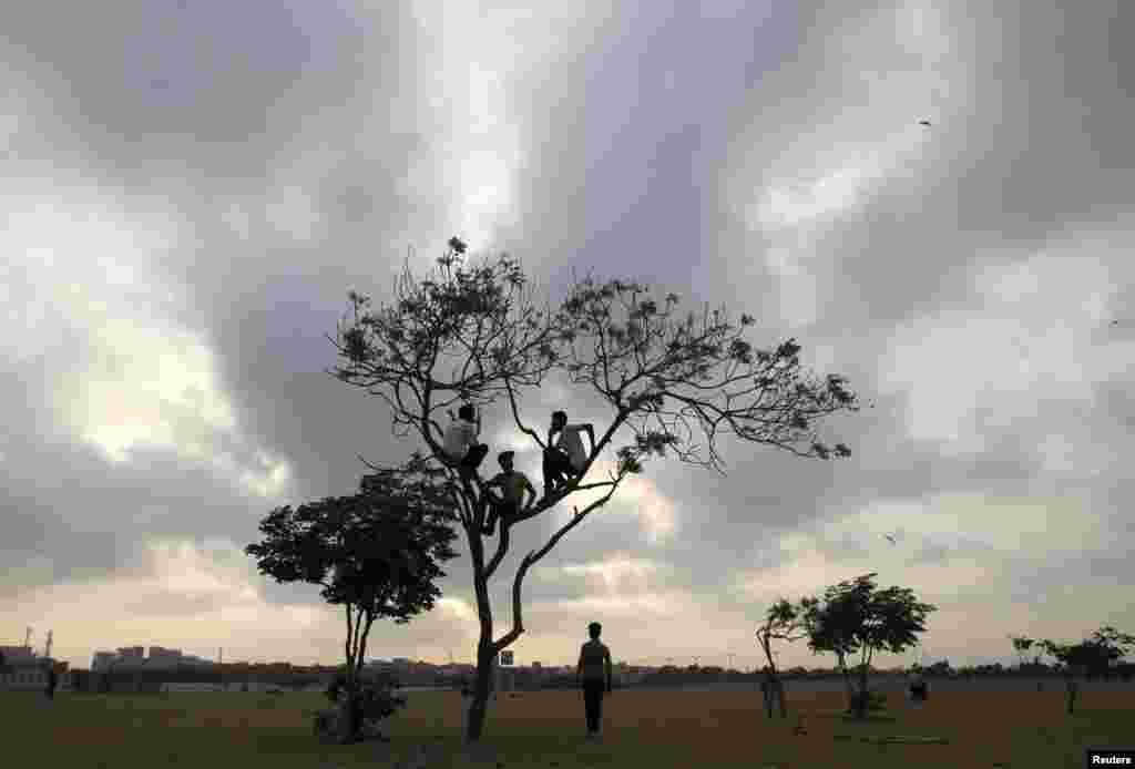 Anak laki-laki duduk di pohon dengan latar belakang langit yang berawan di lapangan terbuka di Karachi, Pakistan.
