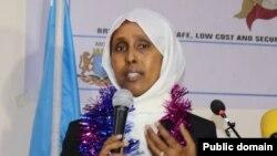 Wasiirka caafimaadka Soomaalia, Drs. Fowziya Abikar