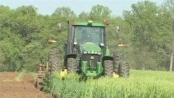 Poljoprivreda: organička vs. konvencionalna