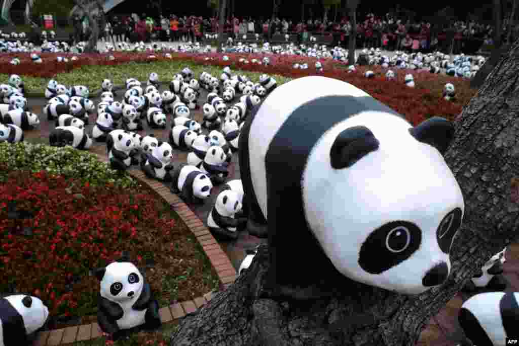 """Local residents look at the paper pandas designed by French artist Paulo Grangeon, during an exhibition called """"Pandas on Tour"""" in Taipei, Taiwan."""