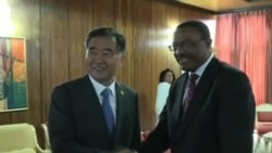 AU Leaders Discuss Mali, Chinese Investment