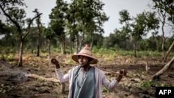 Le troupeau des Fulani, Isa Ibrahim, âgé de 30 ans, se promène dans la brousse à la recherche de son bétail pendant le pâturage du matin dans la réserve de pâturage de Kachia, État de Kaduna, au Nigeria, le 16 avril 2019.
