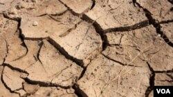 El servicio de meteorología pronostica que en las próximas semanas de noviembre volverán las lluvias.