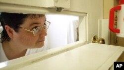 کلی گیسن دانر در سلول زندان