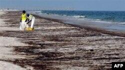 Перші наслідки виливу нафти у Мексиканській затоці