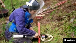 La búsqueda y eliminación de las minas antipersonales en Colombia ha sido una prioridad para la OEA.
