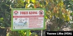 "Papan peringatan ""fokus keong"" di desa Lengkeka, 6 Agustus 2019. (Foto: VOA/Yoanes Litha)"