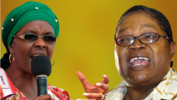ZimPlus: Grace Mugabe Urges Mugabe to Fire Mujuru, Monday, November 17, 2014