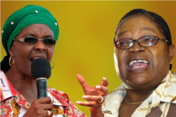 Interview With Obert Gutu And Gadzira Chirumanzu on Grace Mugabe Rallies