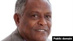 Giram Asmerom, Jakadan Eritrea a Majalisar Dinkin Duniya