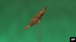 مجسمه پرنده از عاج ماموت، از ۴۰ هزار سال پیش