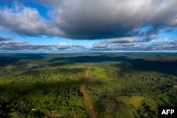 Pemandangan dari udara Jalan Transamazonica (BR-230) dekat Medicilandia, negara Bagian Para di Brasil, yang membelah kawasan Amazon, 13 Maret 2019. Menurut data LSM Imazon, deforestasi di kawasan Amazon meningkat 54 persen pada Januari 2019. (Foto: AFP)