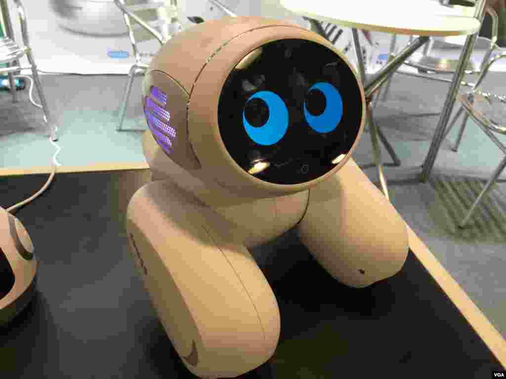 ۲۰. این رباتی است متصل به اینترنت که برای کودکان طراحی شده. این دسته از رباتها در این نمایشگاه از محبوبیت خاصی برخوردار بودند.