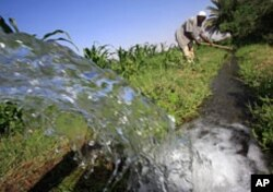A Sudanese farmer prepares his land for irrigation on the banks of the river Nile in Khartoum (file photo).