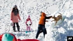 2014年12月6日民众在中国河北省张家口市崇礼县的一处滑雪场与爱犬在雪中嬉戏。