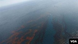 Tumpahan minyak mengancam daerah rawa di sepanjang pantai selatan Amerika Serikat.