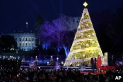 Trump Christmas Tree