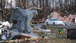 Sheet metal from a home is seen wrapped around a tree in Brookport, Illinois., after tornado hit the small town Sunday, Nov. 17, 2013.