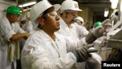 Công nhân của công ty West Liberty Foods, làm việc trong nhà máy ở Iowa