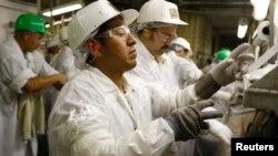 Para pekerja Hispanik di sebuah pabrik makanan di West Liberty, Iowa.