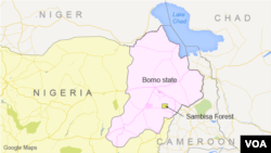 Borno State and Sambisa Forest