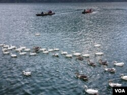Tourists go boating in Naini Lake. (VOA/A. Pasricha)