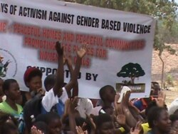 Report on Gender Activism Filed By Arthur Chigoriwa