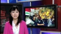 联合国特使辩论叙利亚决议文本