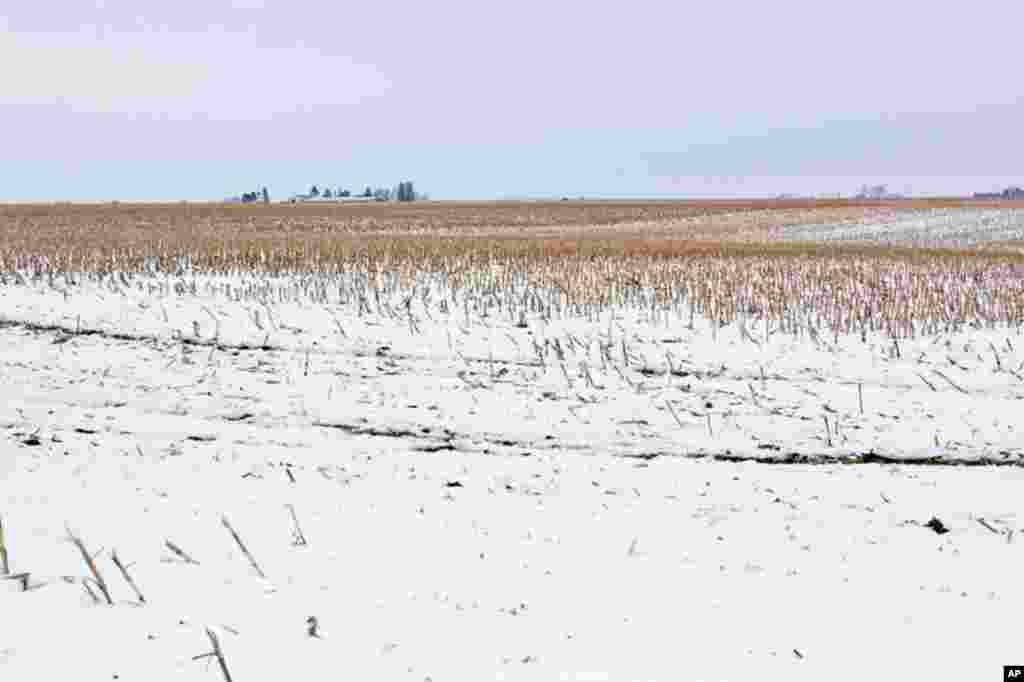 2月16日上午,习近平一行还将参观爱荷华的农场。