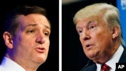 Ted Cruz (à gauche) et Donald Trump, tous deux candidats républicains, s'affrontent pour remporter la primaire en vue des élections présidentielles de 2016 aux Etats-Unis.